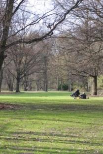 le Tiergarten, jardin immense et magnifique