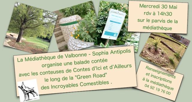 acia-Valbonne-2018_05